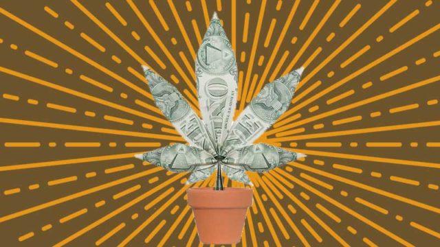 Investire nella cannabis